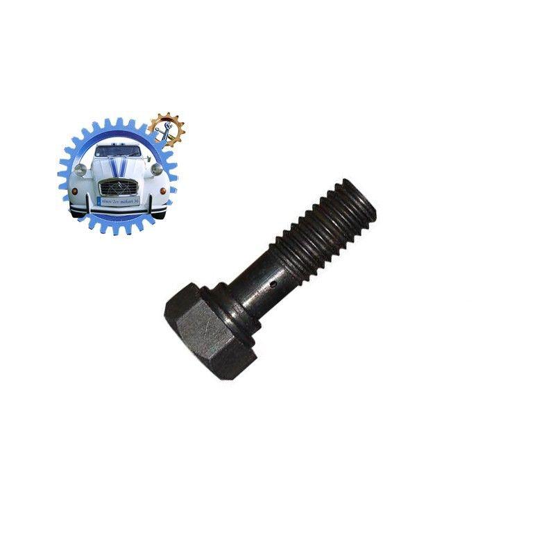 Vis de raccordement tuyau de graissage sur moteur