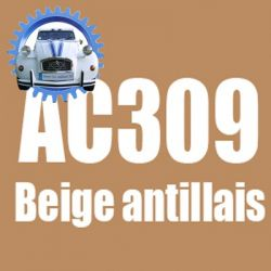 Atomiseur de peinture 400 ML net beige antillais AC309