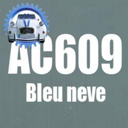 Atomiseur de peinture 400 ML net bleu neve AC609