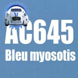 Atomiseur de peinture 400 ML net bleu myosotis AC645